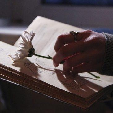 Z książką… foto